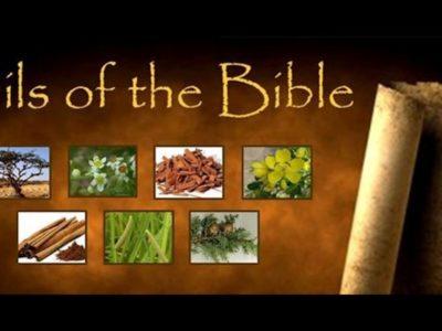 Essential Oil and Biblical basics