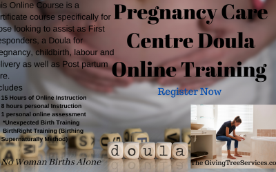 Pregnancy Care Centre Doula Online Training Course